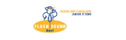 flash-sound